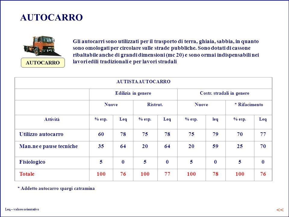AUTOCARRO Gli autocarri sono utilizzati per il trasporto di terra, ghiaia, sabbia, in quanto sono omologati per circolare sulle strade pubbliche. Sono