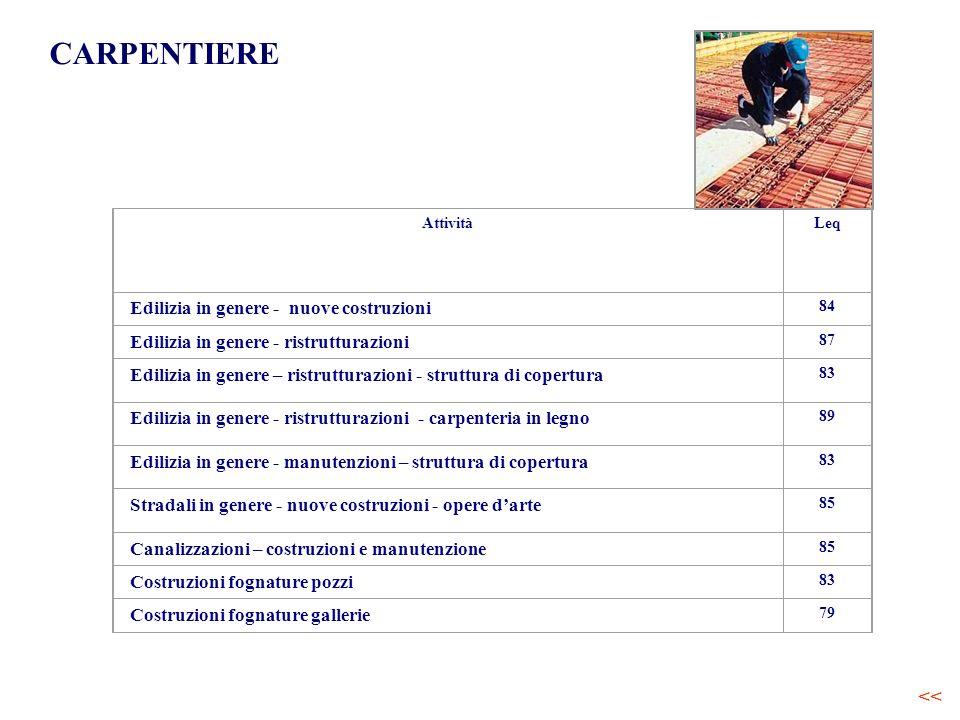 CARPENTIERE AttivitàLeq Edilizia in genere - nuove costruzioni 84 Edilizia in genere - ristrutturazioni 87 Edilizia in genere – ristrutturazioni - str