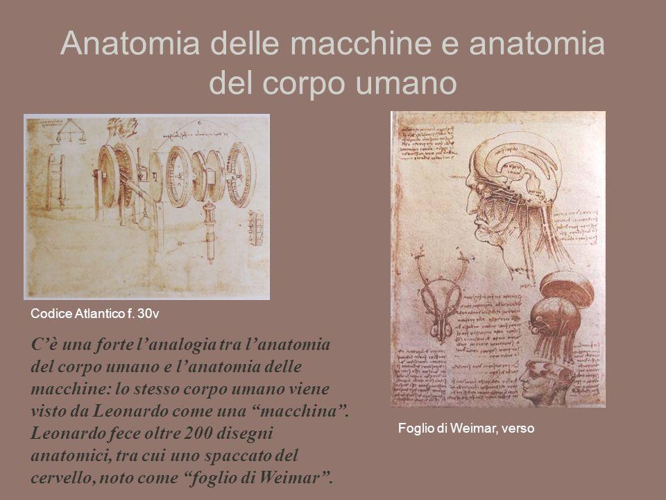 Anatomia delle macchine e anatomia del corpo umano Foglio di Weimar, verso Codice Atlantico f.