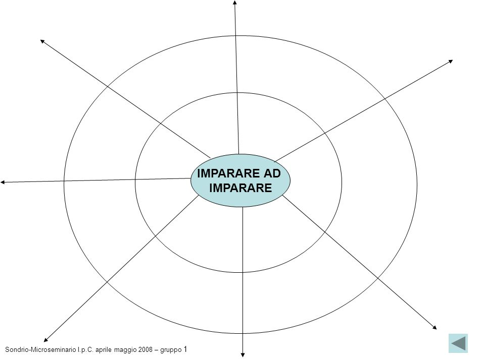 IMPARARE AD IMPARARE Sondrio-Microseminario I.p.C. aprile maggio 2008 – gruppo 1