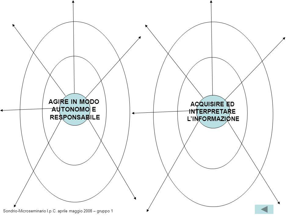 AGIRE IN MODO AUTONOMO E RESPONSABILE ACQUISIRE ED INTERPRETARE LINFORMAZIONE Sondrio-Microseminario I.p.C. aprile maggio 2008 – gruppo 1