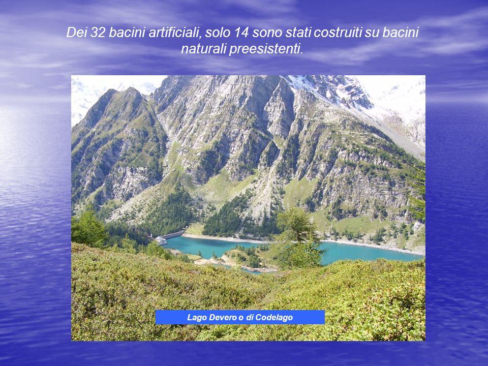 Dei 32 bacini artificiali, solo 14 sono stati costruiti su bacini naturali preesistenti.