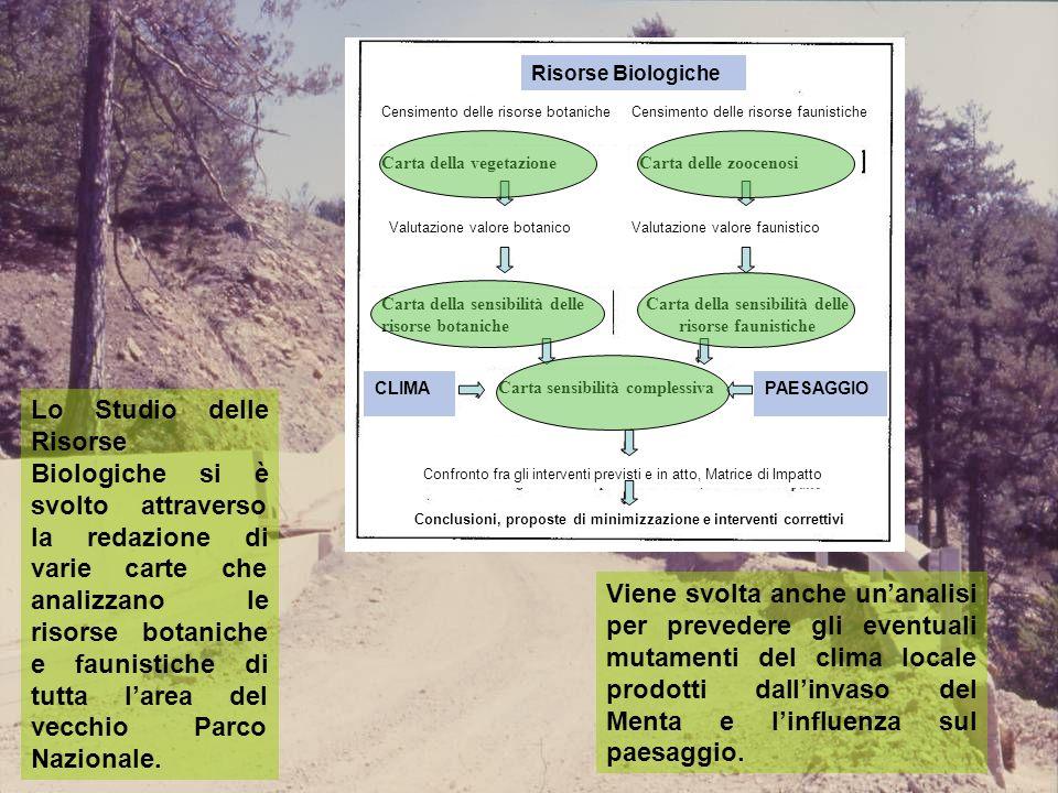 Lo Studio delle Risorse Biologiche si è svolto attraverso la redazione di varie carte che analizzano le risorse botaniche e faunistiche di tutta larea