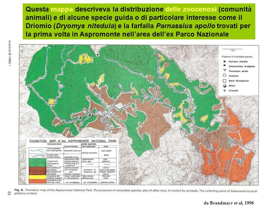 Questa mappa descriveva la distribuzione delle zoocenosi (comunità animali) e di alcune specie guida o di particolare interesse come il Driomio (Dryom