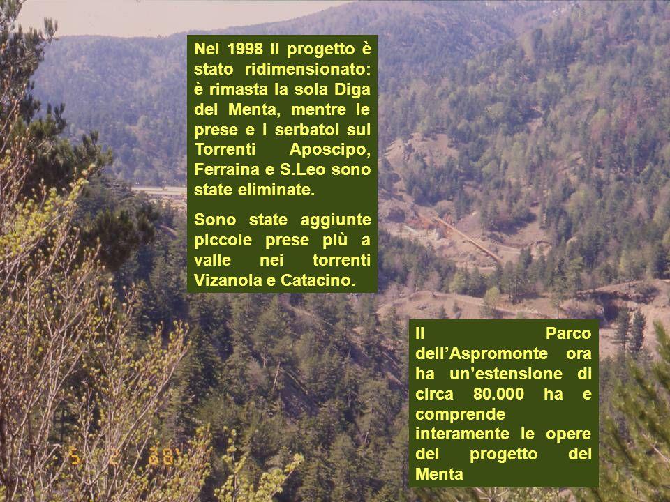 Il Parco dellAspromonte ora ha unestensione di circa 80.000 ha e comprende interamente le opere del progetto del Menta Nel 1998 il progetto è stato ri