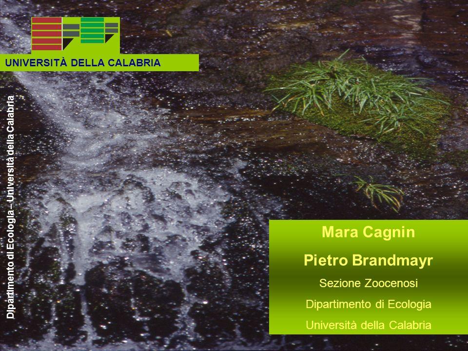 UNIVERSITÀ DELLA CALABRIA Dipartimento di Ecologia – Università della Calabria Mara Cagnin Pietro Brandmayr Sezione Zoocenosi Dipartimento di Ecologia