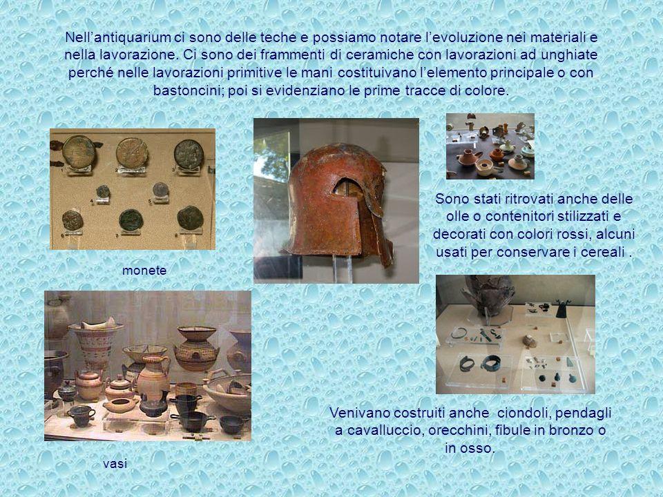Il museo è allestito all'interno della vasta area archeologica che comprende anche la Cittadella di Canne della Battaglia, sito famoso per la vittoria