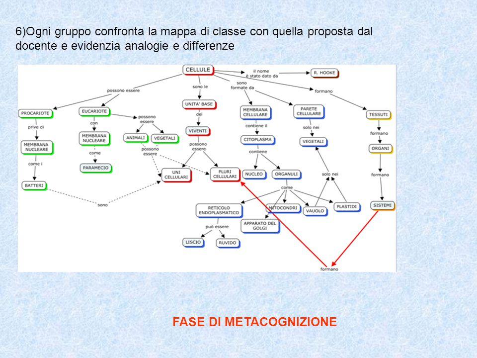 6)Ogni gruppo confronta la mappa di classe con quella proposta dal docente e evidenzia analogie e differenze FASE DI METACOGNIZIONE