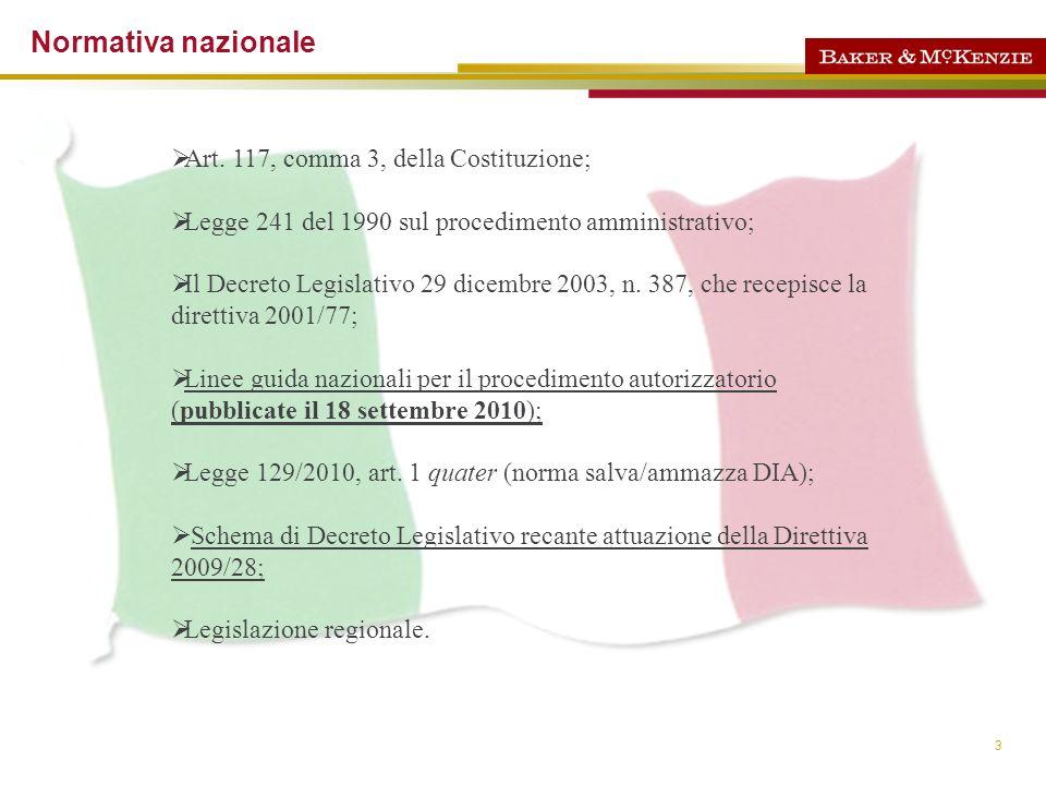 4 Linee guida Nazionali per il procedimento autorizzatorio.