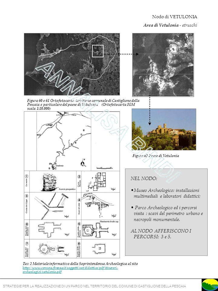 STRATEGIE PER LA REALIZZAZIONE DI UN PARCO NEL TERRITORIO DEL COMUNE DI CASTIGLIONE DELLA PESCAIA Figura 62 Paese di Vetulonia Figura 60 e 61 Ortofotocarta territorio comunale di Castiglione della Pescaia e particolare del paese di Vetulonia (Ortofotocarta IGM scala 1:10.000) Nodo di VETULONIA Area di Vetulonia - etruschi NEL NODO: Museo Archeologico: installazioni multimediali e laboratori didattici; Parco Archeologico ed i percorsi visita : scavi del perimetro urbano e necropoli monumentale.