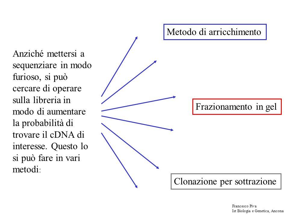Anziché mettersi a sequenziare in modo furioso, si può cercare di operare sulla libreria in modo di aumentare la probabilità di trovare il cDNA di interesse.