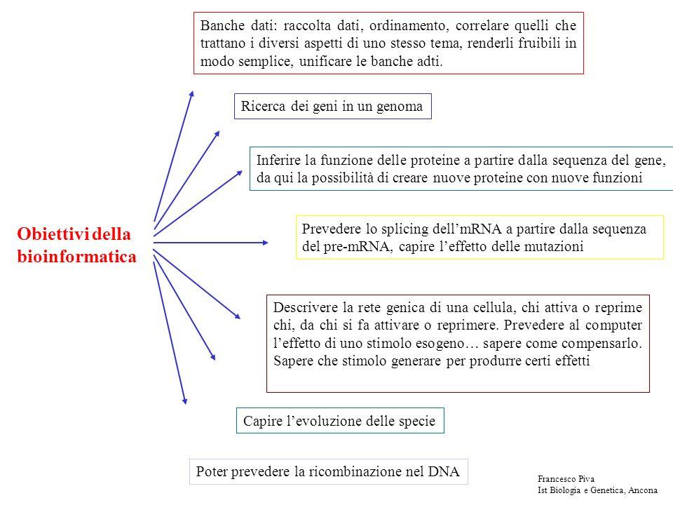 Lattuale modello di predizione di un gene Stati principali Inserzione di uno stato (regioni altamente variabili) Stati particolari (es: n) - si possono rappresentare regole semplici - non si considera la frequenza dei dinucleotidi - non si considera la dipendenza (correlazione) fra i nucleotidi - in realtà ci vorrebbe un modello di Markov per gli esoni, uno per gli introni, uno per le regioni non tradotte Francesco Piva Ist Biologia e Genetica, Ancona