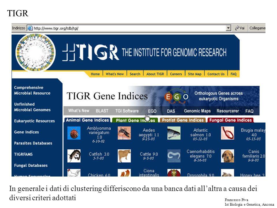 TIGR In generale i dati di clustering differiscono da una banca dati allaltra a causa dei diversi criteri adottati Francesco Piva Ist Biologia e Genetica, Ancona