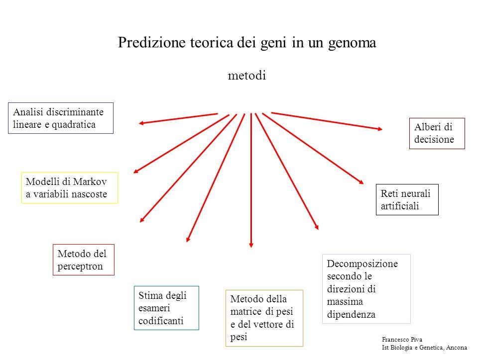 Predizione teorica dei geni in un genoma metodi Analisi discriminante lineare e quadratica Modelli di Markov a variabili nascoste Metodo del perceptron Stima degli esameri codificanti Metodo della matrice di pesi e del vettore di pesi Decomposizione secondo le direzioni di massima dipendenza Alberi di decisione Reti neurali artificiali Francesco Piva Ist Biologia e Genetica, Ancona
