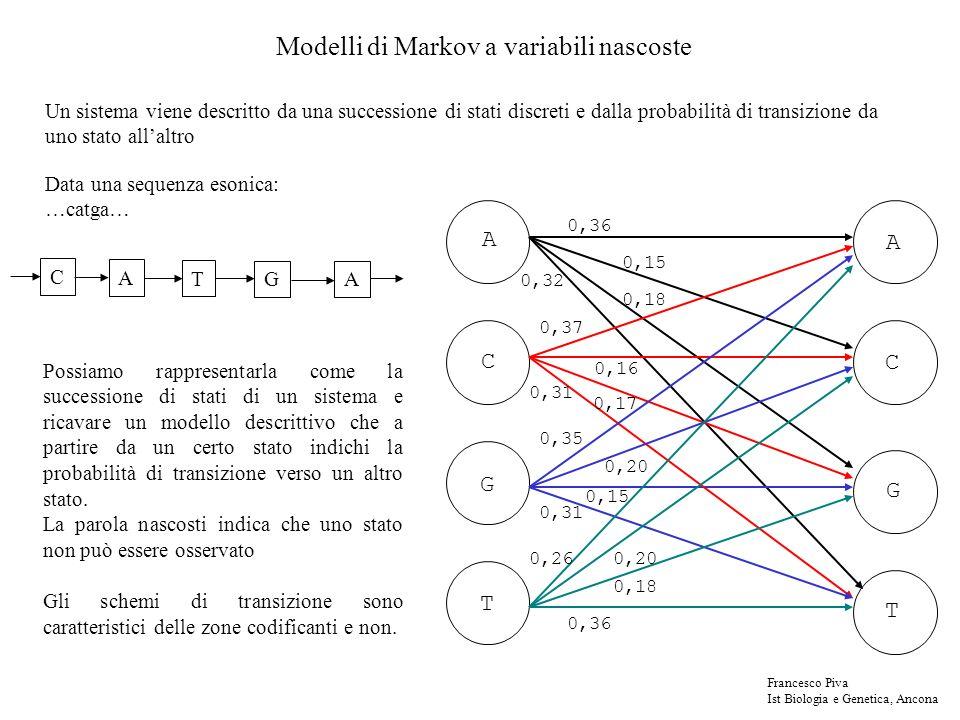 Modelli di Markov a variabili nascoste Un sistema viene descritto da una successione di stati discreti e dalla probabilità di transizione da uno stato allaltro A A C C G T G T 0,32 0,31 0,18 0,36 0,37 0,35 0,260,20 0,15 0,20 0,17 0,16 0,18 0,15 0,36 A C G T A Data una sequenza esonica: …catga… Possiamo rappresentarla come la successione di stati di un sistema e ricavare un modello descrittivo che a partire da un certo stato indichi la probabilità di transizione verso un altro stato.