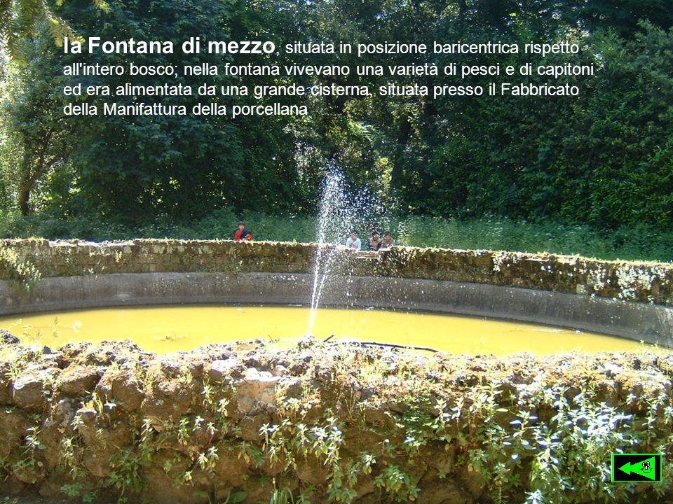 la Fontana di mezzo, situata in posizione baricentrica rispetto all'intero bosco; nella fontana vivevano una varietà di pesci e di capitoni ed era ali