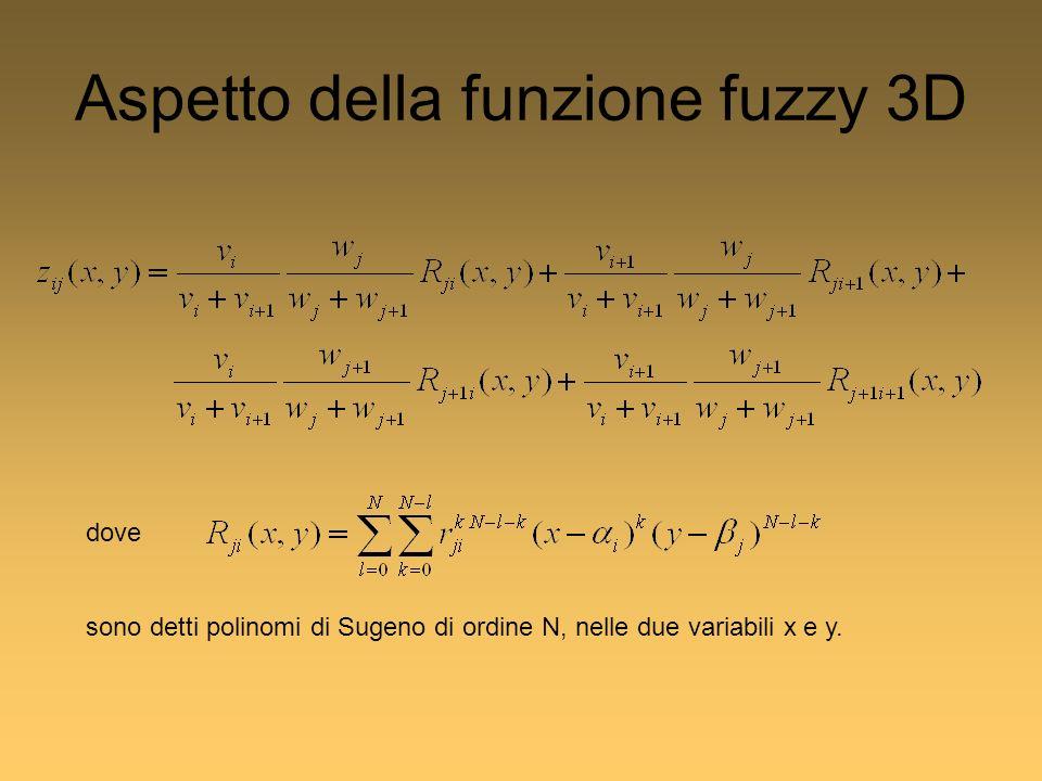 Aspetto della funzione fuzzy 3D dove sono detti polinomi di Sugeno di ordine N, nelle due variabili x e y.