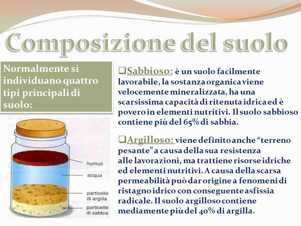 Humus: è un suolo contenete più del 10% di sostanza organica; normalmente costituisce i terreni forestali, torbosi o quelli che per lunghi anni (anche secoli) sono stati coltivati ad orto.