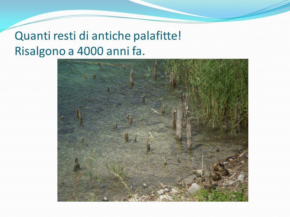 IL PALLINO DELLA GEOGRAFIA I resti delle palafitte sono stati ritrovati nel 1929 quando il livello dellacqua del lago si è abbassato in seguito alla costruzione di una centrale idroelettrica.