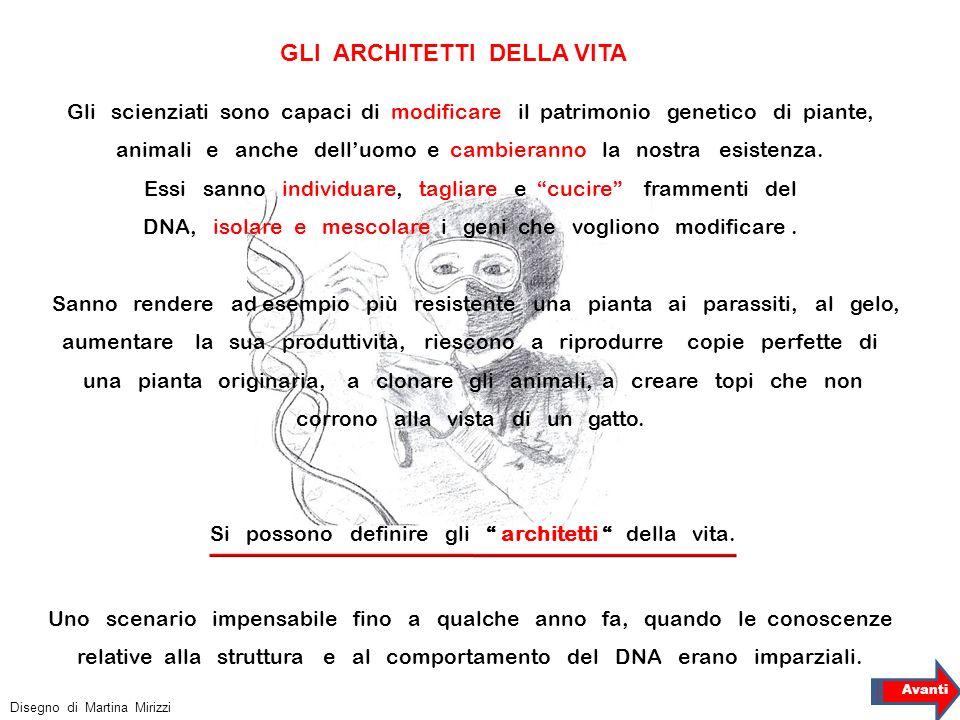 GLI ARCHITETTI DELLA VITA Disegno di Martina Mirizzi Avanti Gli scienziati sono capaci di modificare il patrimonio genetico di piante, animali e anche