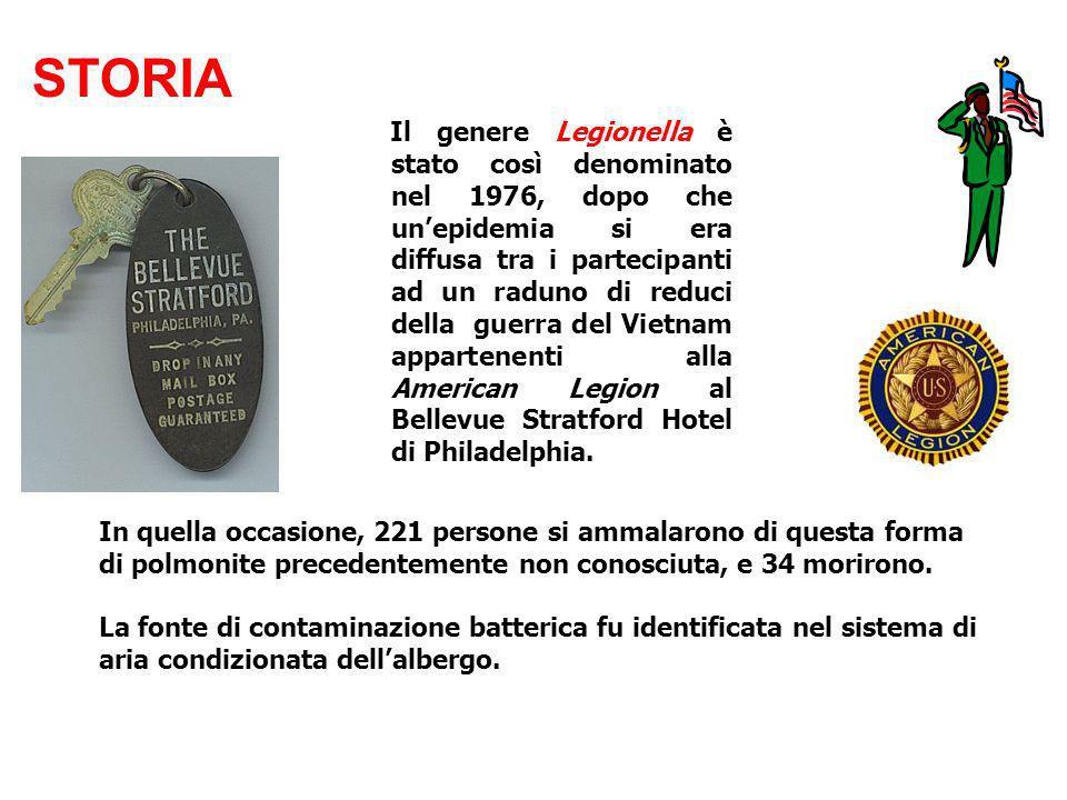 Il genere Legionella è stato così denominato nel 1976, dopo che unepidemia si era diffusa tra i partecipanti ad un raduno di reduci della guerra del V
