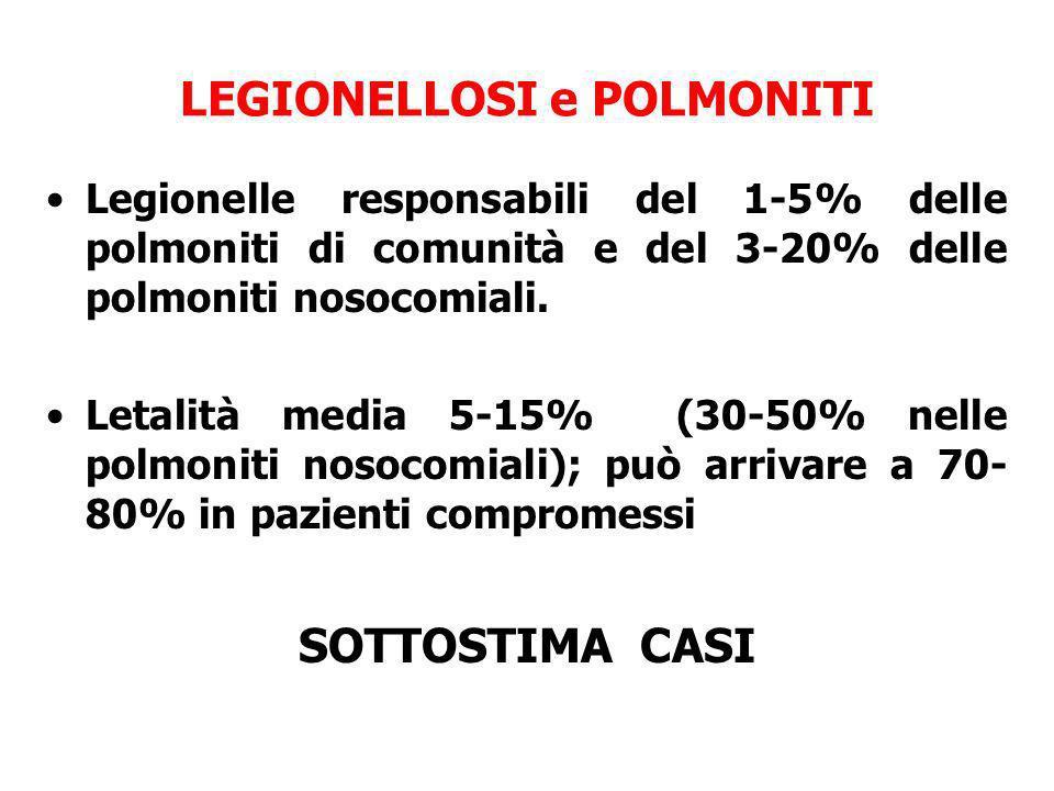 LEGIONELLOSI e POLMONITI Legionelle responsabili del 1-5% delle polmoniti di comunità e del 3-20% delle polmoniti nosocomiali. Letalità media 5-15% (3