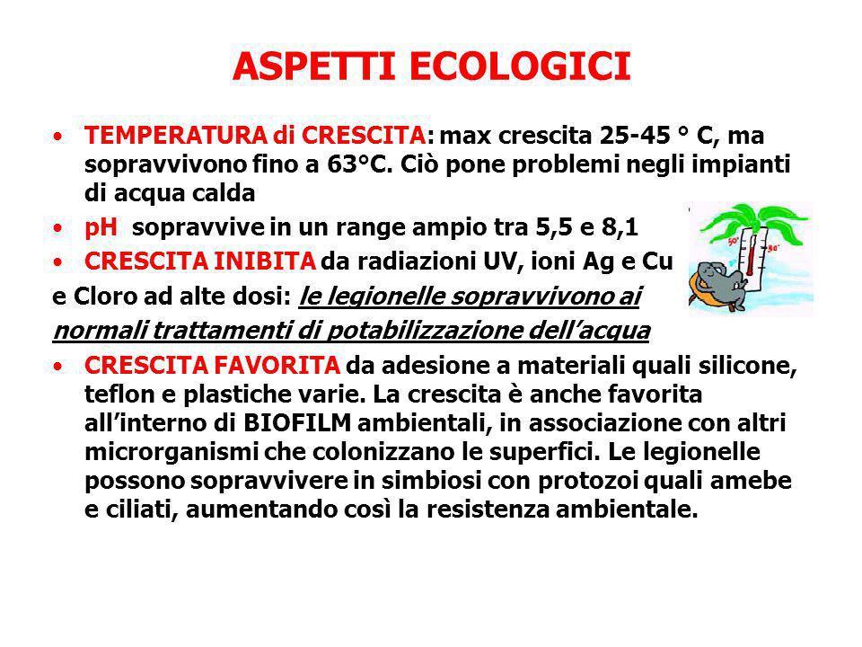 ASPETTI ECOLOGICI TEMPERATURA di CRESCITA: max crescita 25-45 ° C, ma sopravvivono fino a 63°C. Ciò pone problemi negli impianti di acqua calda pH sop