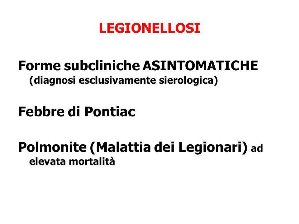 LEGIONELLOSI Forme subcliniche ASINTOMATICHE (diagnosi esclusivamente sierologica) Febbre di Pontiac Polmonite (Malattia dei Legionari) ad elevata mor