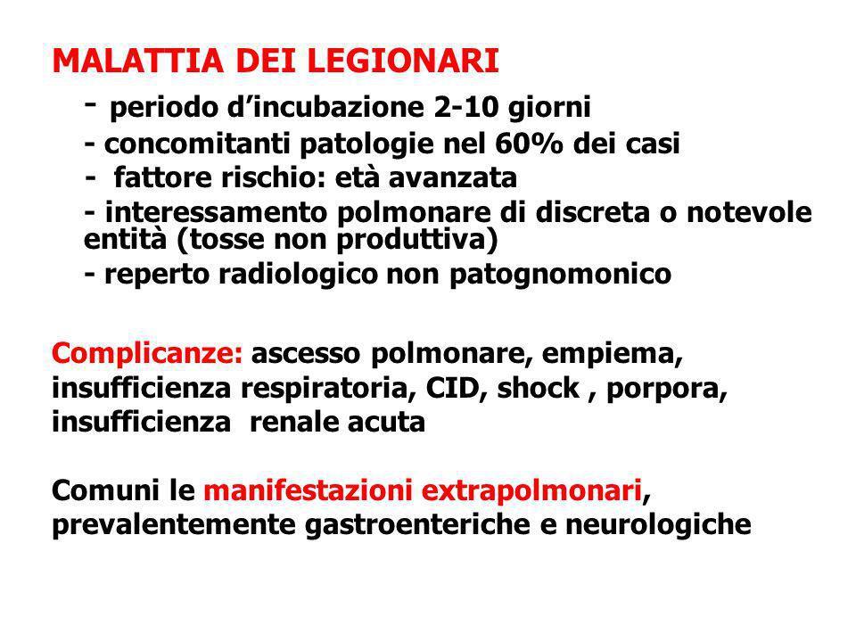 MALATTIA DEI LEGIONARI - periodo dincubazione 2-10 giorni - concomitanti patologie nel 60% dei casi - fattore rischio: età avanzata - interessamento p