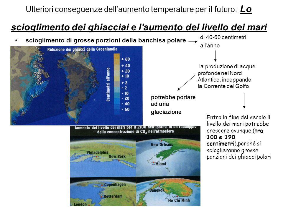 Ulteriori conseguenze dellaumento temperature per il futuro: Lo scioglimento dei ghiacciai e l'aumento del livello dei mari scioglimento di grosse por
