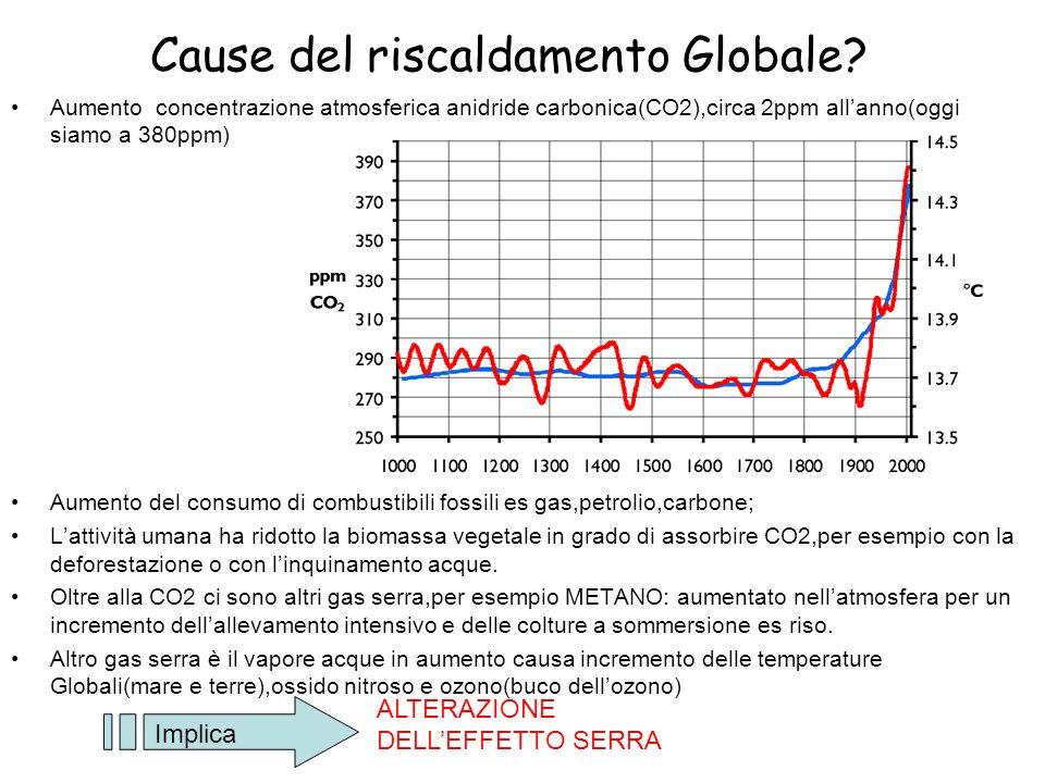 Cause del riscaldamento Globale? Aumento concentrazione atmosferica anidride carbonica(CO2),circa 2ppm allanno(oggi siamo a 380ppm) Aumento del consum