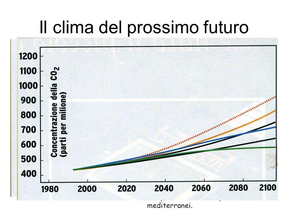 Il clima del prossimo futuro Il clima del prossimo futuro è legato soprattutto all'evoluzione delle emissioni di gas- serra e, in particolare, della C