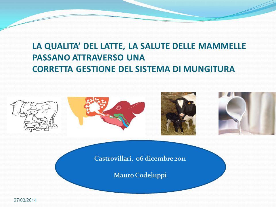 Medie riguardanti sei studi condotti internazionalmente sulleffetto della stimolazione e della preparazione della mammella sulla mungitura (Fonte:Reneau and Chastain, 1995) Produzione media di latte kg/mungitura Flusso medio di latte (kg/minuto) Tempo medio di mungitura (minuti) Assenza di stimolazione 10,37 1,77 6,30 Stimolazione e preparazione della mammella (60s) 10,80 2,13 5,50