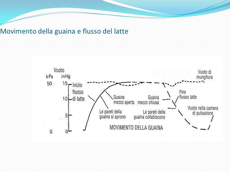 Movimento della guaina e flusso del latte