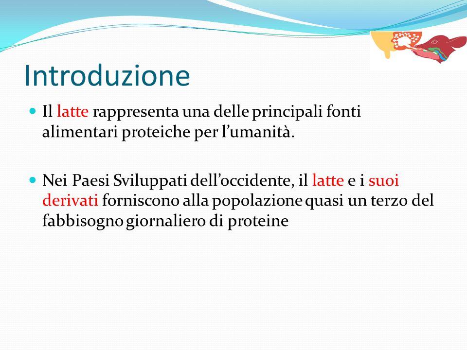 Il latte rappresenta una delle principali fonti alimentari proteiche per lumanità. Nei Paesi Sviluppati delloccidente, il latte e i suoi derivati forn