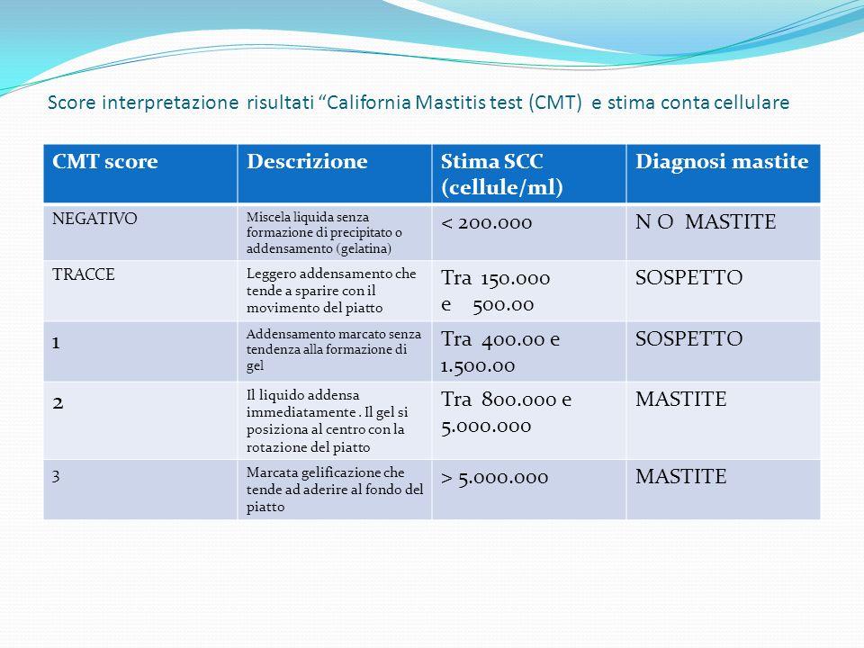 Score interpretazione risultati California Mastitis test (CMT) e stima conta cellulare CMT scoreDescrizioneStima SCC (cellule/ml) Diagnosi mastite NEG