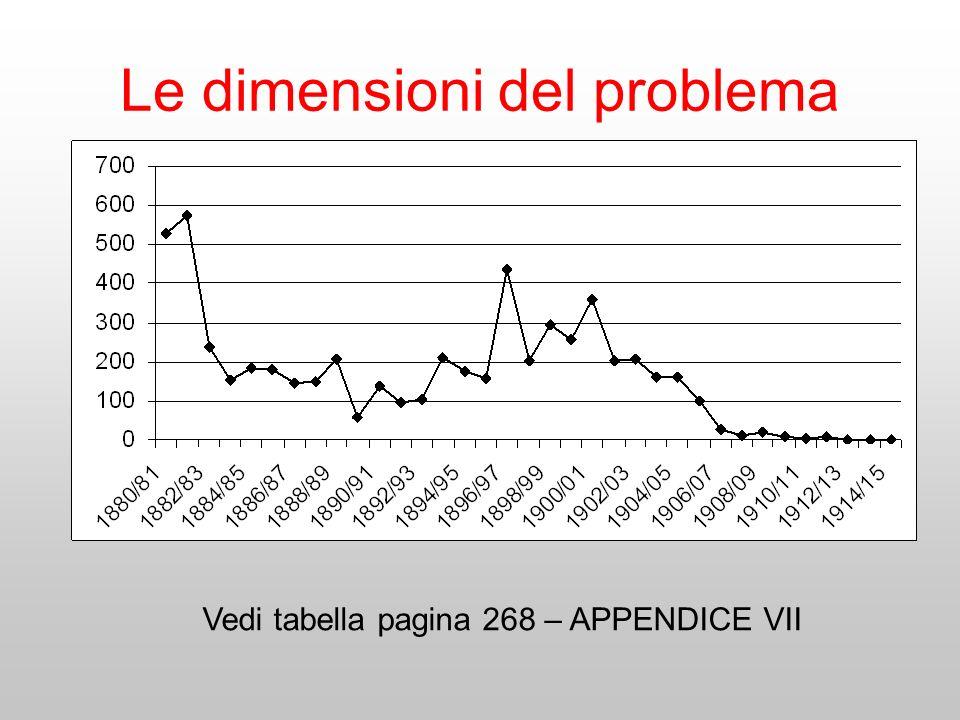 Le dimensioni del problema Vedi tabella pagina 268 – APPENDICE VII