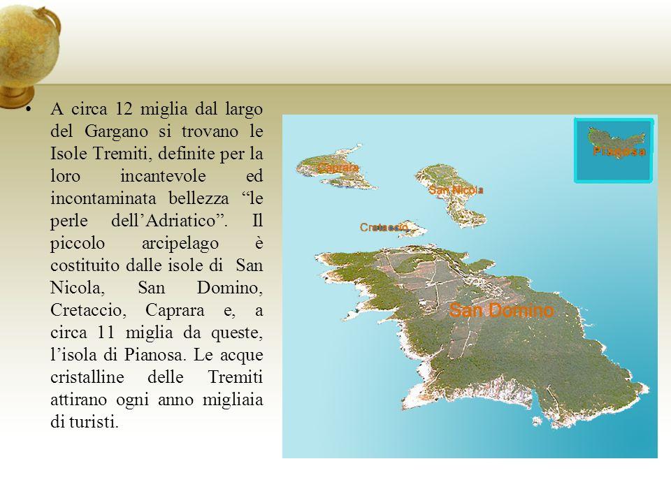 A circa 12 miglia dal largo del Gargano si trovano le Isole Tremiti, definite per la loro incantevole ed incontaminata bellezza le perle dellAdriatico.