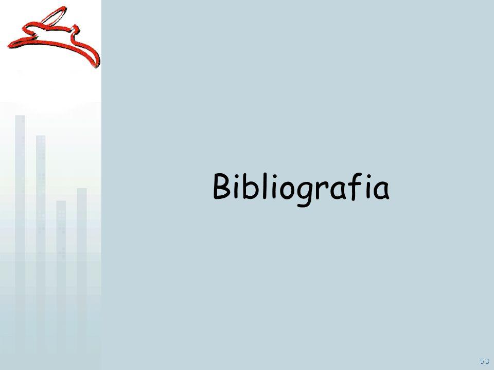 53 Bibliografia