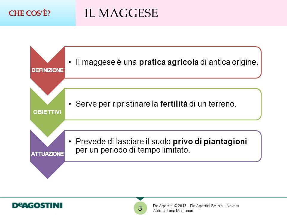 DEFINIZIONE Il maggese è una pratica agricola di antica origine.