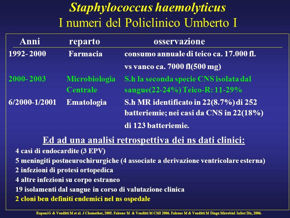 Staphylococcus haemolyticus I numeri del Policlinico Umberto I Anni reparto osservazione 1992- 2000 Farmacia consumo annuale di teico ca. 17.000 fl. v
