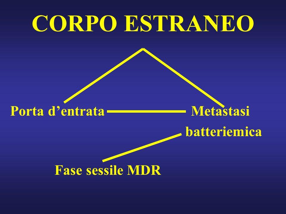CORPO ESTRANEO Porta dentrata Metastasi batteriemica Fase sessile MDR