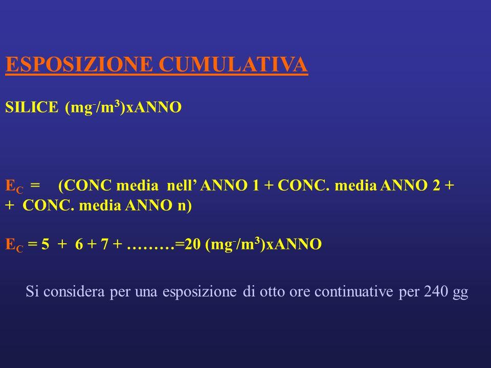 ESPOSIZIONE CUMULATIVA SILICE (mg - /m 3 )xANNO E C = (CONC media nell ANNO 1 + CONC.