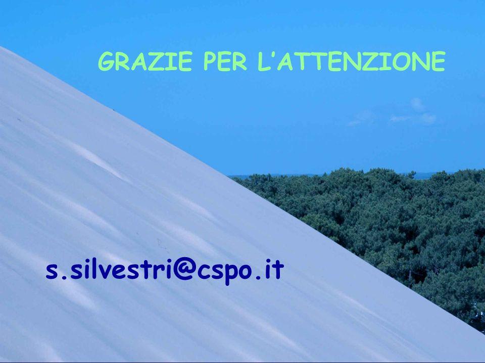 GRAZIE PER LATTENZIONE s.silvestri@cspo.it