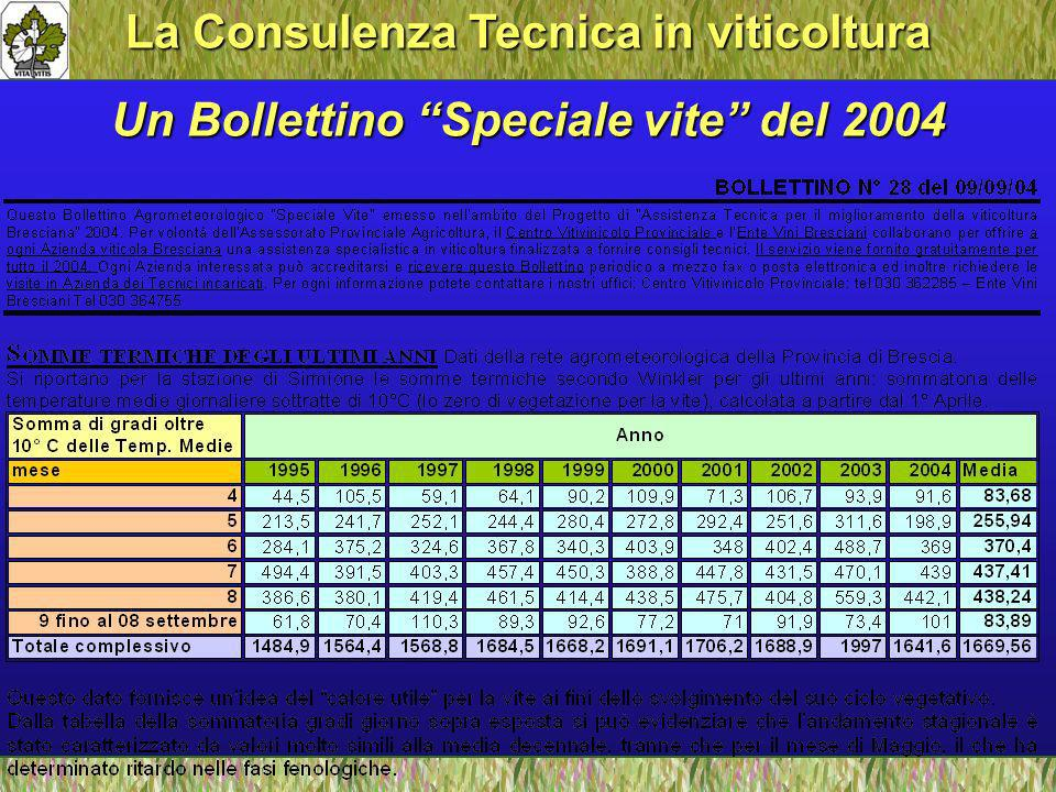 Un Bollettino Speciale vite del 2004 La Consulenza Tecnica in viticoltura
