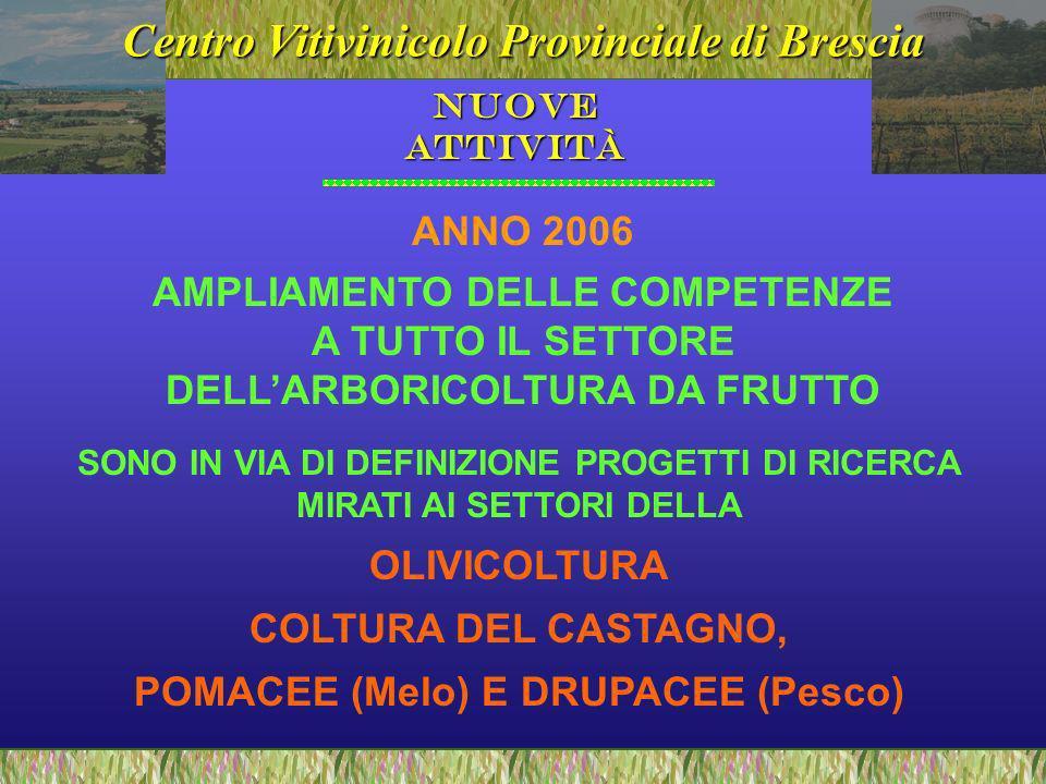 Centro Vitivinicolo Provinciale di Brescia Nuove Attività AMPLIAMENTO DELLE COMPETENZE A TUTTO IL SETTORE DELLARBORICOLTURA DA FRUTTO SONO IN VIA DI DEFINIZIONE PROGETTI DI RICERCA MIRATI AI SETTORI DELLA OLIVICOLTURA COLTURA DEL CASTAGNO, POMACEE (Melo) E DRUPACEE (Pesco) ANNO 2006