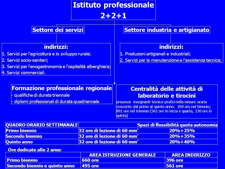 Istituto professionale 2+2+1 Settore dei serviziSettore industria e artigianato indirizzi: 1.