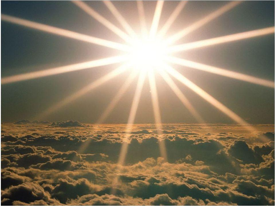 Il sole regola da sempre lattività di tutti gli esseri viventi sulla terra.