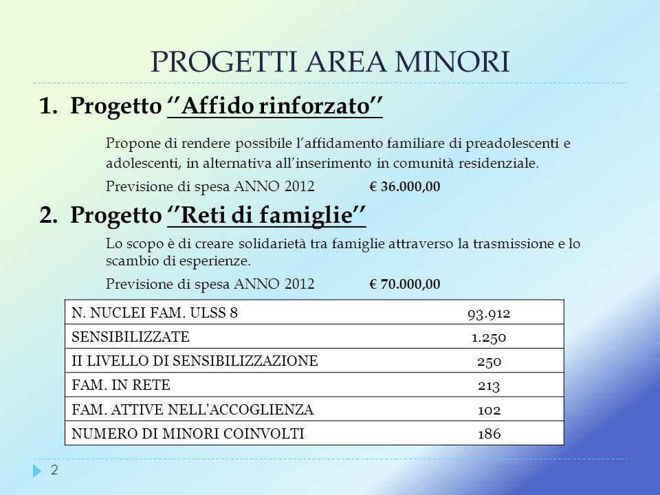 PROGETTI AREA MINORI 1. Progetto Affido rinforzato Propone di rendere possibile laffidamento familiare di preadolescenti e adolescenti, in alternativa