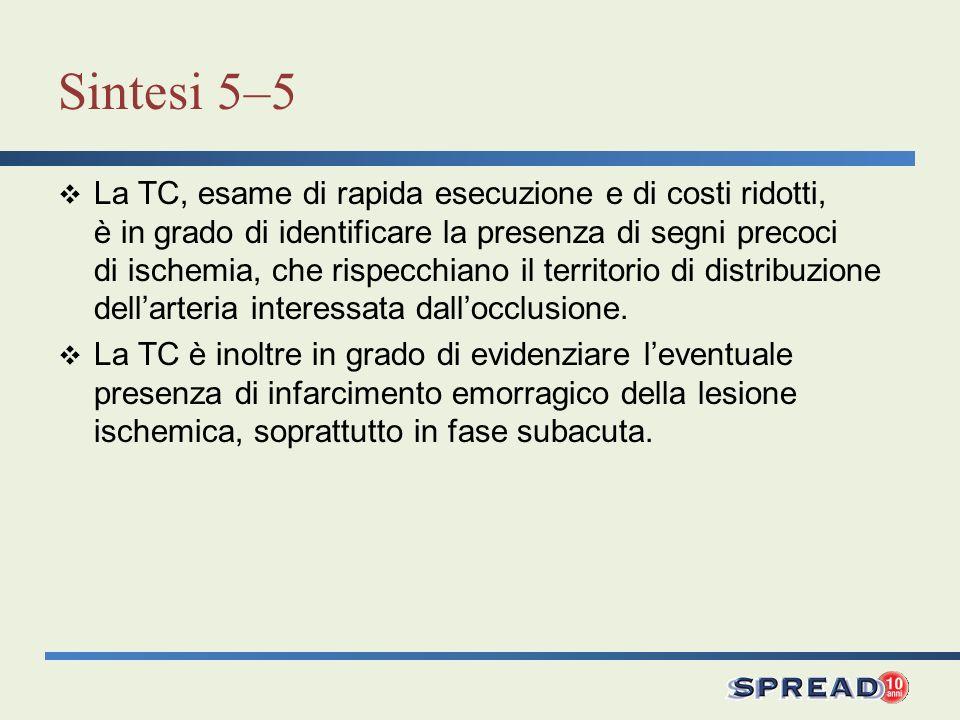 Sintesi 5–5 La TC, esame di rapida esecuzione e di costi ridotti, è in grado di identificare la presenza di segni precoci di ischemia, che rispecchian